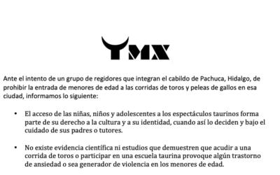 TMX INFORMACIÓN NIÑOS-PACHUCA